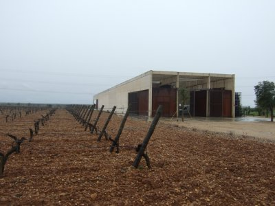 Bodegas Belondrade