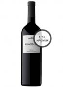 Vino Gavanza Magnum